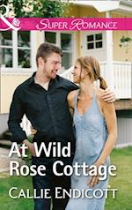 At Wild Rose Cottage (Mills & Boon Superromance) (Montana Skies, Book 2) af Callie Endicott