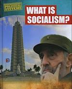 What is Socialism? (Understanding Political Systems)