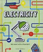 Electricity (Flowchart Science)
