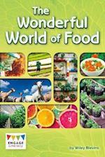The Wonderful World of Food (Engage Literacy Engage Literacy Dark Blue)