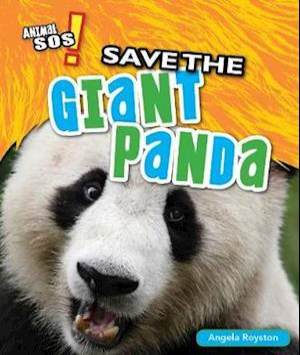 Save the Giant Panda