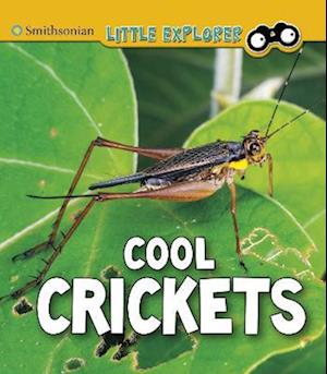 Cool Crickets