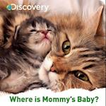 Discovery Where Is Mommy's Baby?