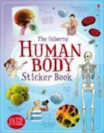 Human Body Sticker Book (Information Sticker Books)