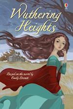 Wuthering Heights (Young Reading Series 4 Fiction)