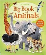 Big Book Of Big Animals (Big Books)