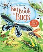 Big Book of Big Bugs (Big Books)