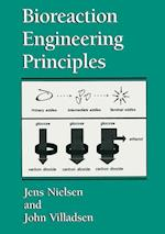 Bioreaction Engineering Principles af Jens Nielsen, John Villadsen