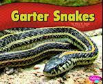 Garter Snakes (Pebble Plus)