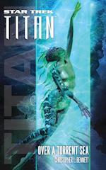 Star Trek: Titan #5: Over a Torrent Sea