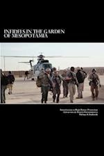 Infidels in the Garden of Mesopotamia - Introduction to High Threat Protection Operations in Hostile Environments
