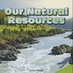 Our Natural Resources (Infomax Common Core Readers)