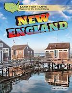 New England af Niccole Bartley
