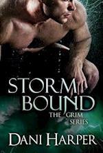 Storm Bound af Dani Harper