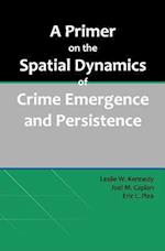 A Primer on the Spatial Dynamics of Crime Emergence and Persistence