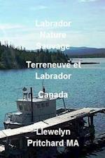 Labrador Nature Sauvage, Terreneuve Et Labrador, Canada