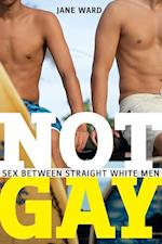 Not Gay (Sexual Cultures)