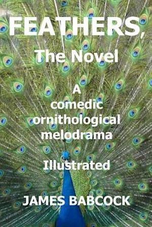 Bog, paperback Feathers, the Novel af MR James F. Babcock