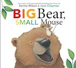 Big Bear, Small Mouse (Bear Book S)