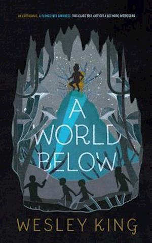 Bog, hardback A World Below af Wesley King