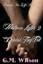 Northern Lights 2 af C. M. Wilson