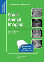 Small Animal Imaging (Veterinary Self assessment Color Review Series)