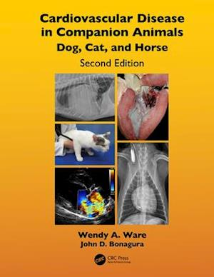 Cardiovascular Disease in Companion Animals