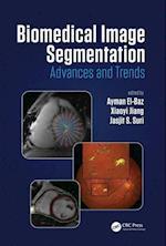 Biomedical Image Segmentation