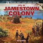 Life in Jamestown Colony (What You Didnt Know About History)