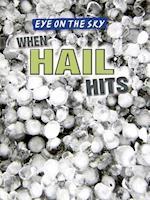 When Hail Hits af Christine Honders
