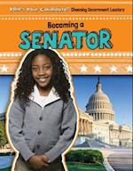 Becoming a Senator (Whos Your Candidate Choosing Government Leaders)