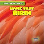 Name That Bird!