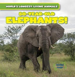 80-Year-Old Elephants!