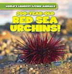 200-Year-Old Red Sea Urchins! (Worlds Longest Living Animals)