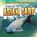 Attack of the Asian Carp (Animal Invaders Destroying Native Habitats)