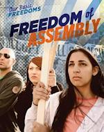 Freedom of Assembly (Our Basic Freedoms)