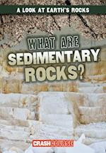 What Are Sedimentary Rocks? (Look at Earths Rocks)