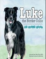 Luke the Border Collie: My Early Years