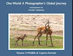One World (One World A Photographers Global Journey, nr. 2)