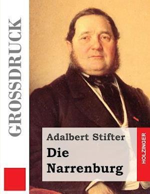 Bog, paperback Die Narrenburg (Grodruck) af Adalbert Stifter