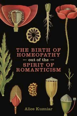 Bog, paperback The Birth of Homeopathy out of the Spirit of Romanticism af Alice A. Kuzniar