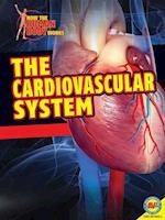 The Cardiovascular System af Simon Rose