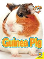Guinea Pig (Caring for My Pet)