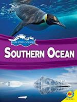 Southern Ocean (Our Five Oceans)