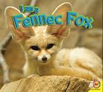 Fennec Fox (I Am)
