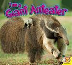 Giant Anteater (I Am)