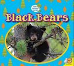 Black Bears (Little Backyard Animals)