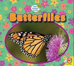 Butterflies (Little Backyard Animals)