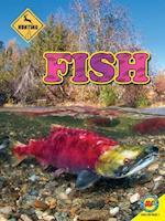 Fish (Hunting)