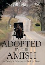 Adopted by the Amish: A Family's Pilgrimage Back in Time